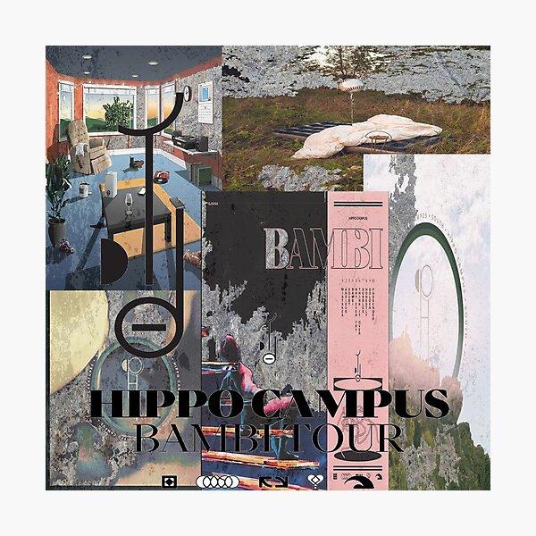 Hippo Campus Album and EP Art Photographic Print