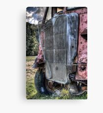 Grilled Canvas Print