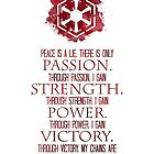 The Sith Code by Denise Giffin
