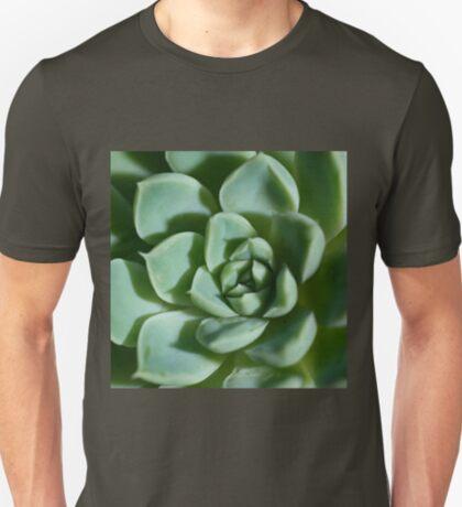 Petalled Succulent - Agave T-Shirt