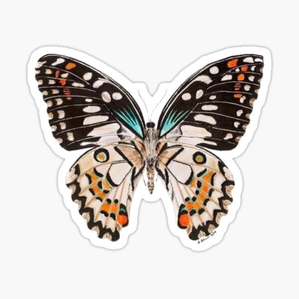 Papillon Sticker