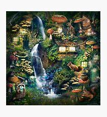 Mushroom Village Photographic Print