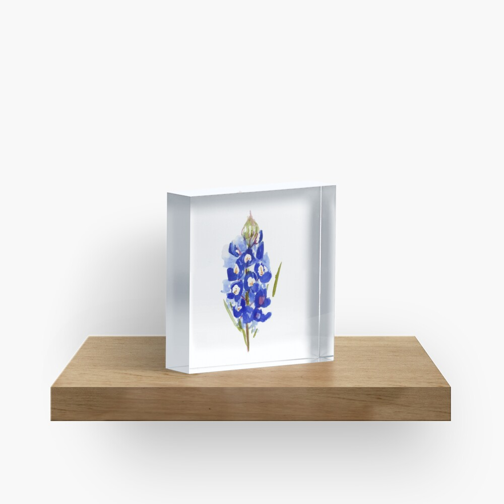 Bluebonnet Watercolor Illustration Texas State Flower Acrylic Block