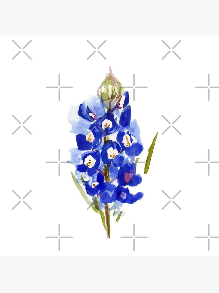 Bluebonnet Watercolor Illustration Texas State Flower by ImageNugget