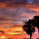 Southwestern Sunset by Sue  Cullumber