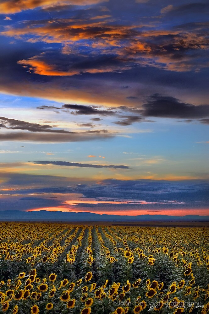 The Days Last Light by John  De Bord Photography
