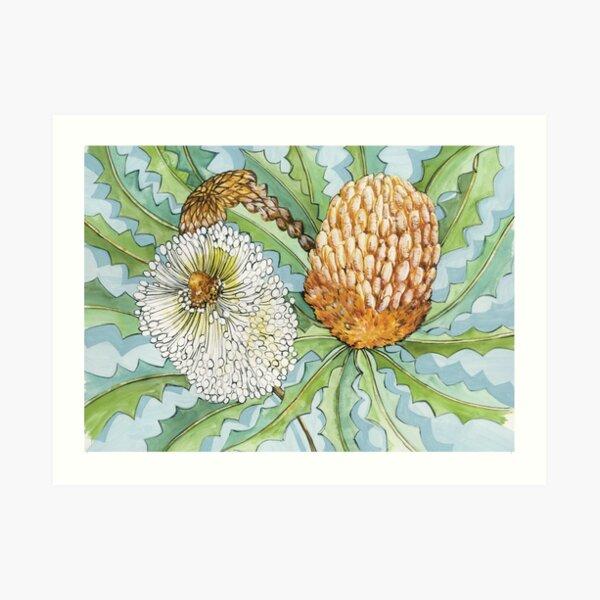 Banksia Art Print