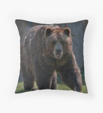 Looking for Nice Home. Throw Pillow