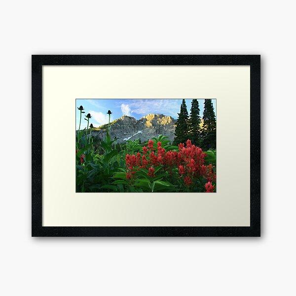 Devil's Castle Wildflowers Framed Art Print