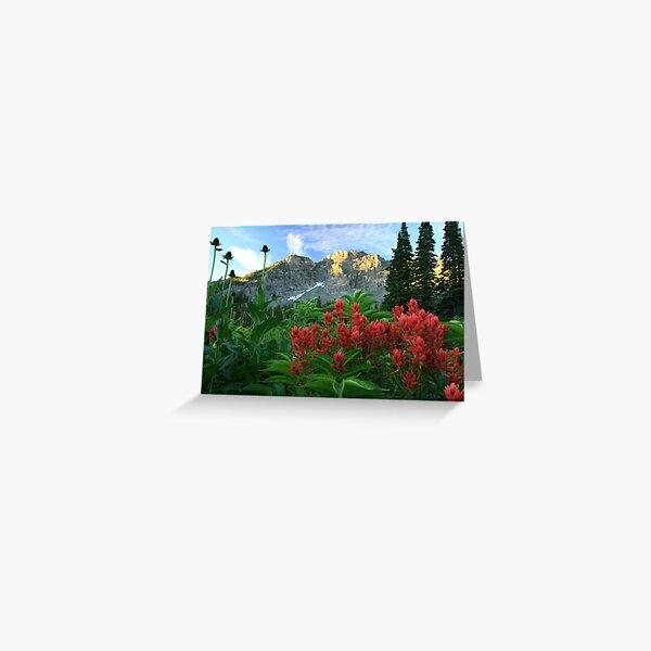 Devil's Castle Wildflowers Greeting Card