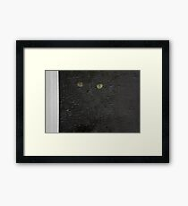 black cat, screen window Framed Print