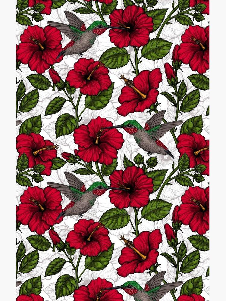 Hibiskusblüten und Kolibris von katerinamk