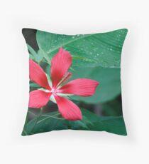 Scarlet Hibiscus Flower Throw Pillow