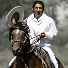 Peruvian Pasifino and Rider by oracle0017