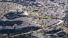 Almond Farm, Las Alpujarras , Spain by Cliff Williams