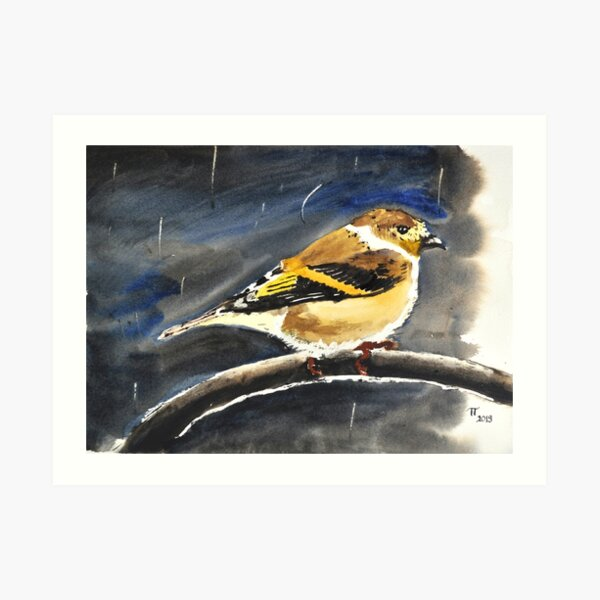Small Bird Sheltering Storm Art Print