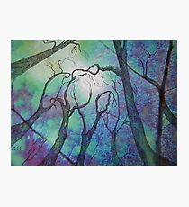 Blue trees - landscape - natural world - blue fantasy Photographic Print