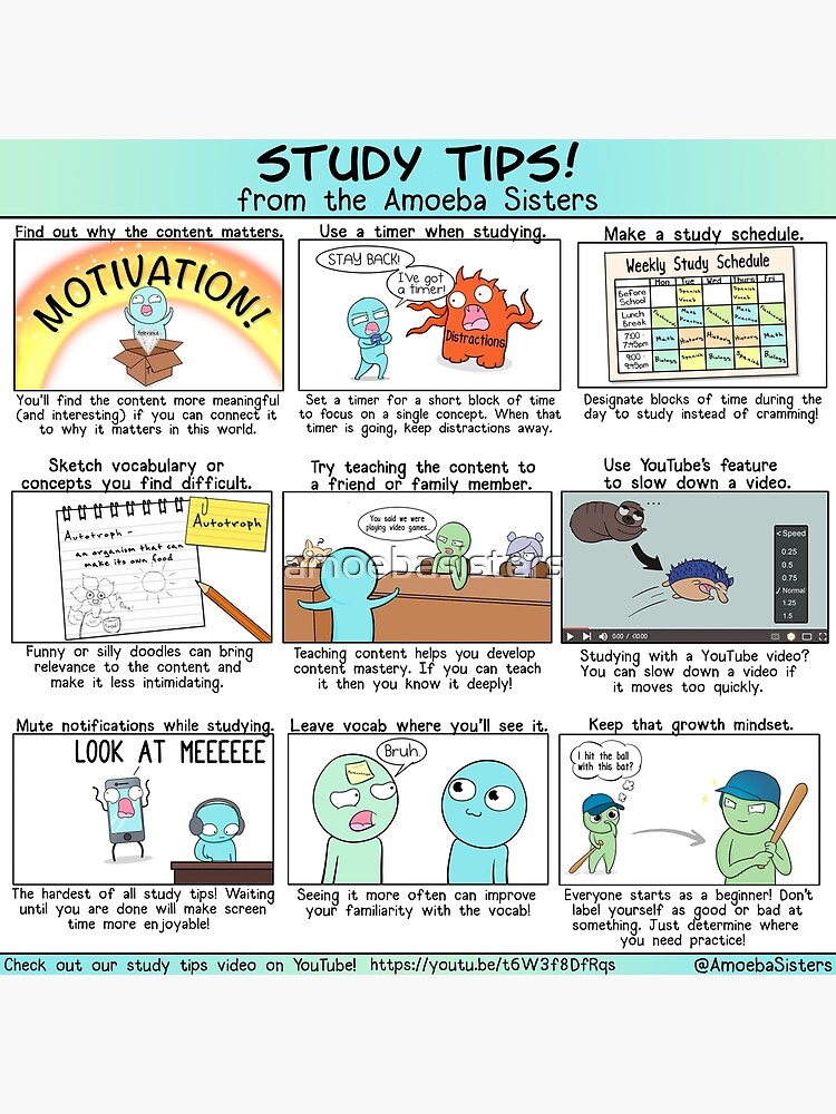 Study Tips from the Amoeba Sisters by amoebasisters