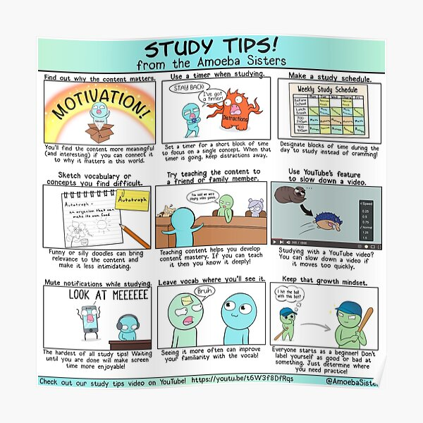 Study Tips from the Amoeba Sisters Poster