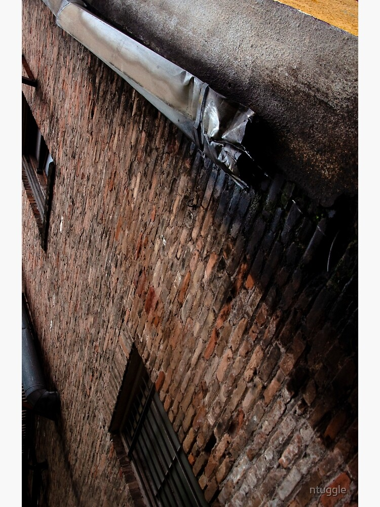 Industrial Brick and Drain by ntuggle