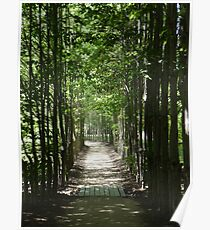 Peaceful Path Poster