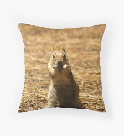 Musical Chipmunk Throw Pillow