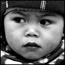 A Little Boy in Vietnam by Betsy  Seeton