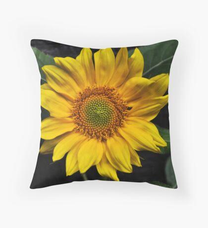 Little Miss Sunshine Throw Pillow