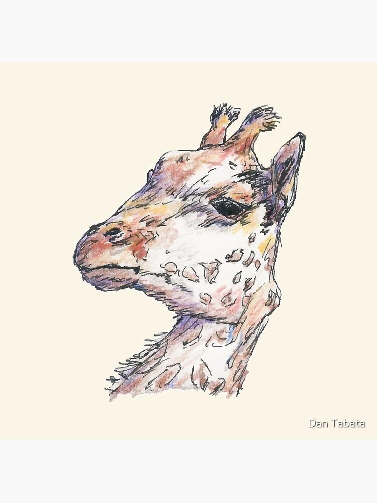 Giraffe by dmtab