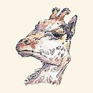 Giraffe by Dan Tabata
