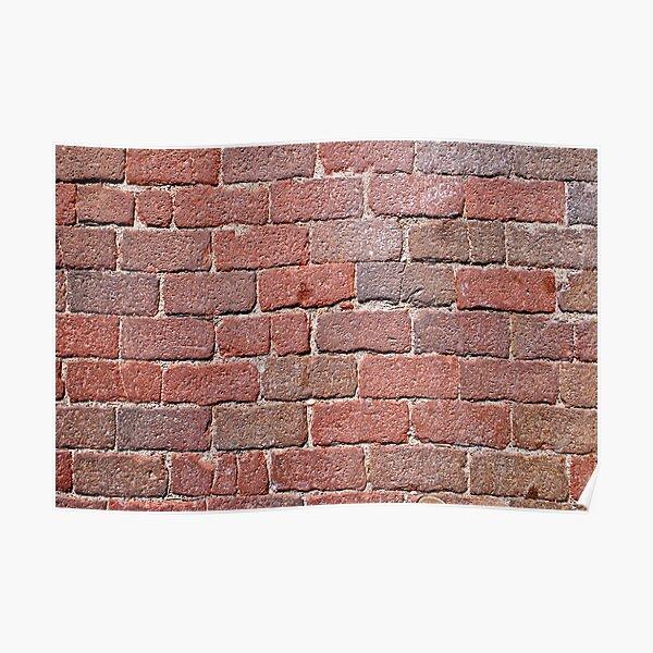 Brick Pavers 20100807 Poster