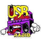 USB sLAve Radio by USBsLAve