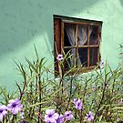 Dulan, Cottage by Digby