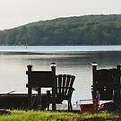 Life at the Lake by Debra Fedchin