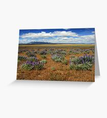 Springtime In Honey Lake Valley Greeting Card
