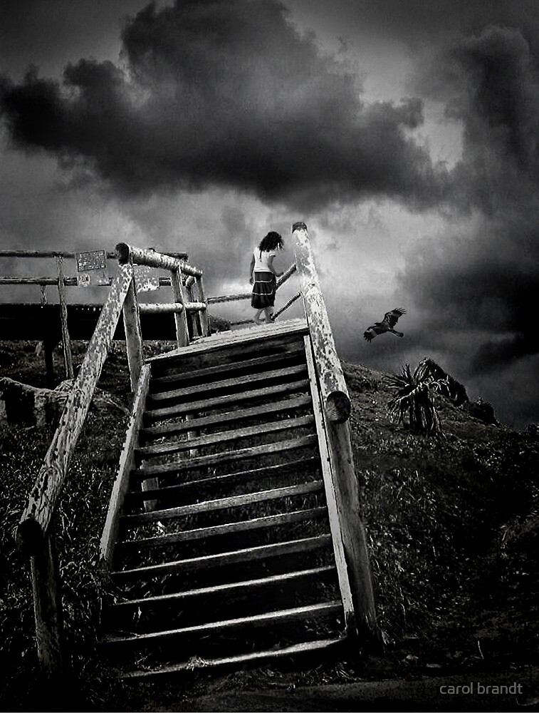 storm child by carol brandt