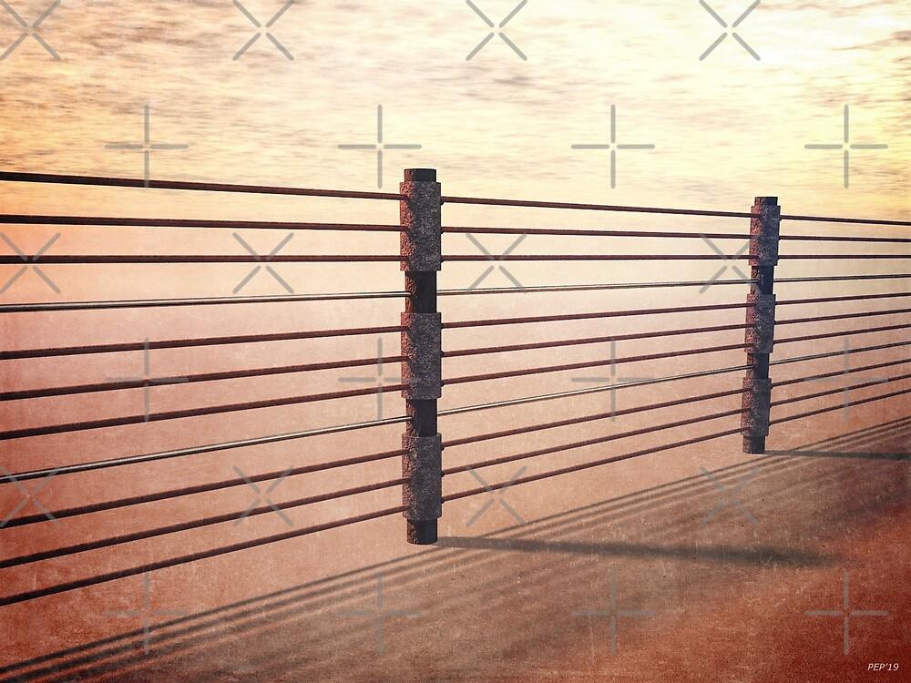 Border Fence by morningdance