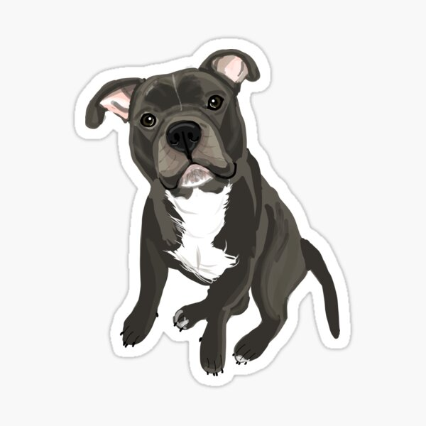 Pitbull Digital Painting Sticker