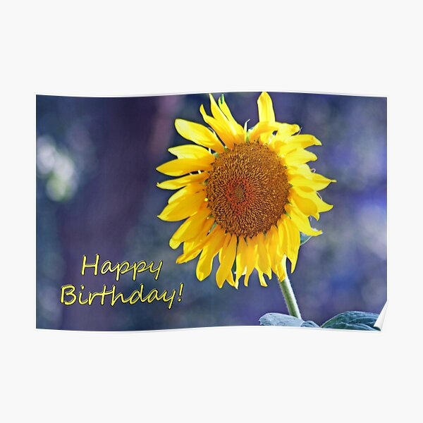 Sunflower Happy Birthday Card Poster