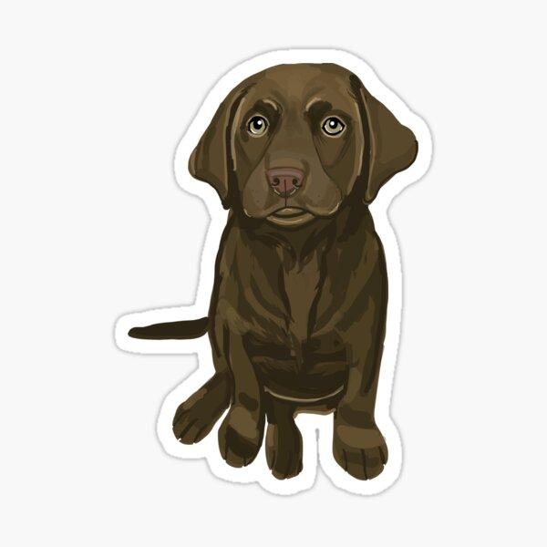 Chocolate Lab Puppy Digital Drawing Sticker