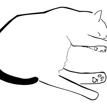 Sleeping Cat by sjaros