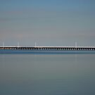 big pier. gippsland coast - victoria by tim buckley | bodhiimages