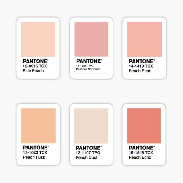 Peach color square stickers Sticker