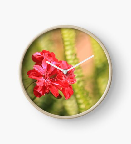 Perfect conditions to bloom Clock