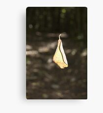Impossible? Canvas Print