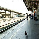 Lucca Station by Sam Mortimer