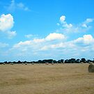 Rolling Texas by BShirey