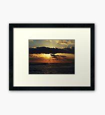 cajun sun Framed Print