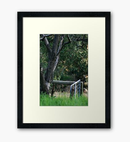 Lonely Gate Framed Print