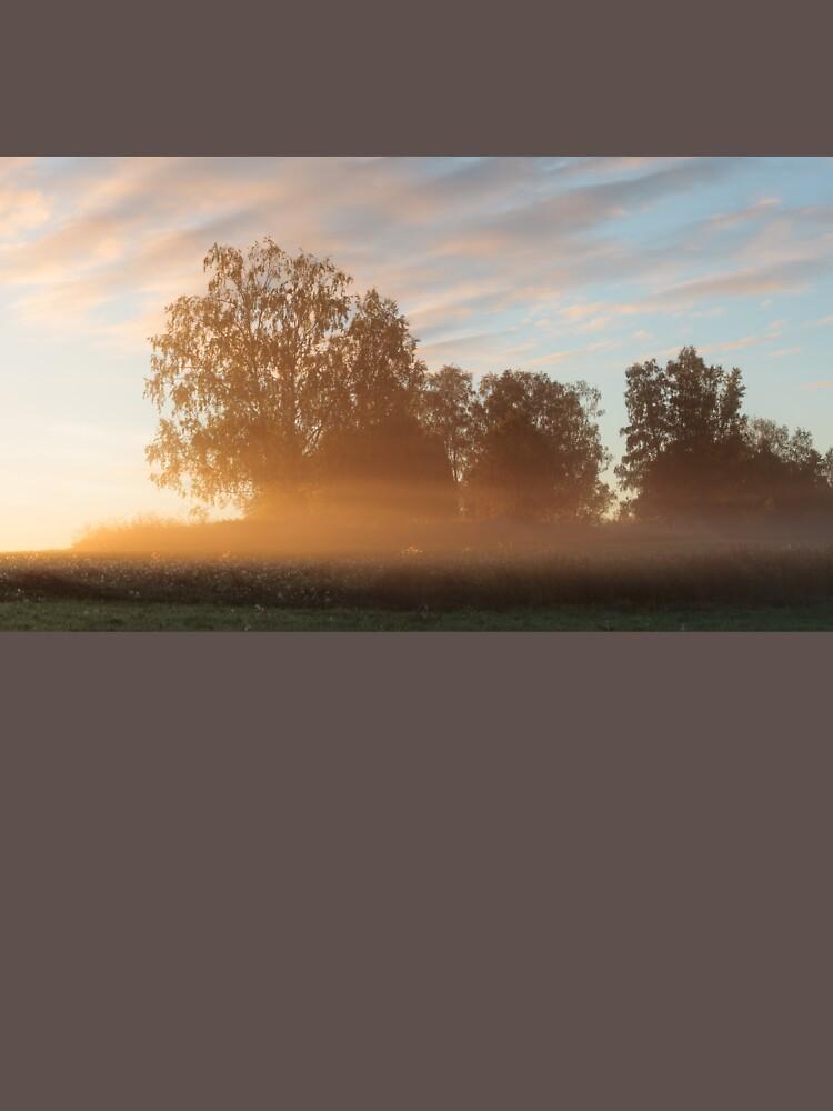 Misty meadow landscape sunrise by Juhku